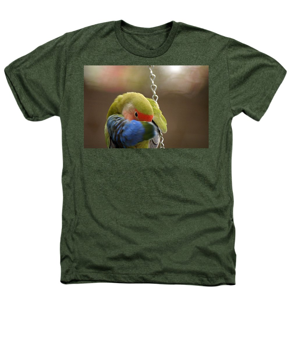 Clay Heathers T-Shirt featuring the photograph Peek A Boo by Clayton Bruster