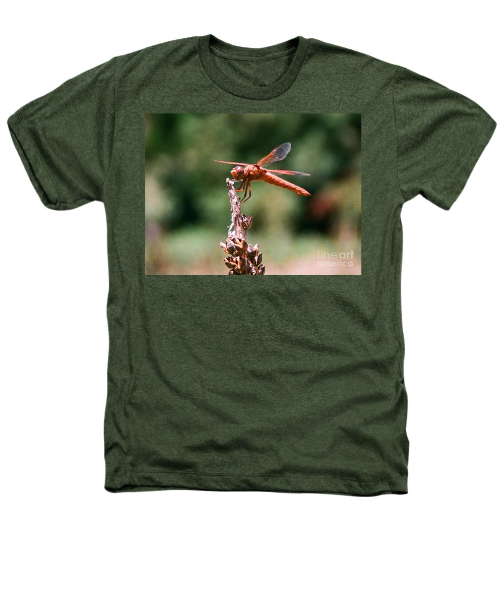 Dragonfly Heathers T-Shirt featuring the photograph Red Dragonfly II by Dean Triolo