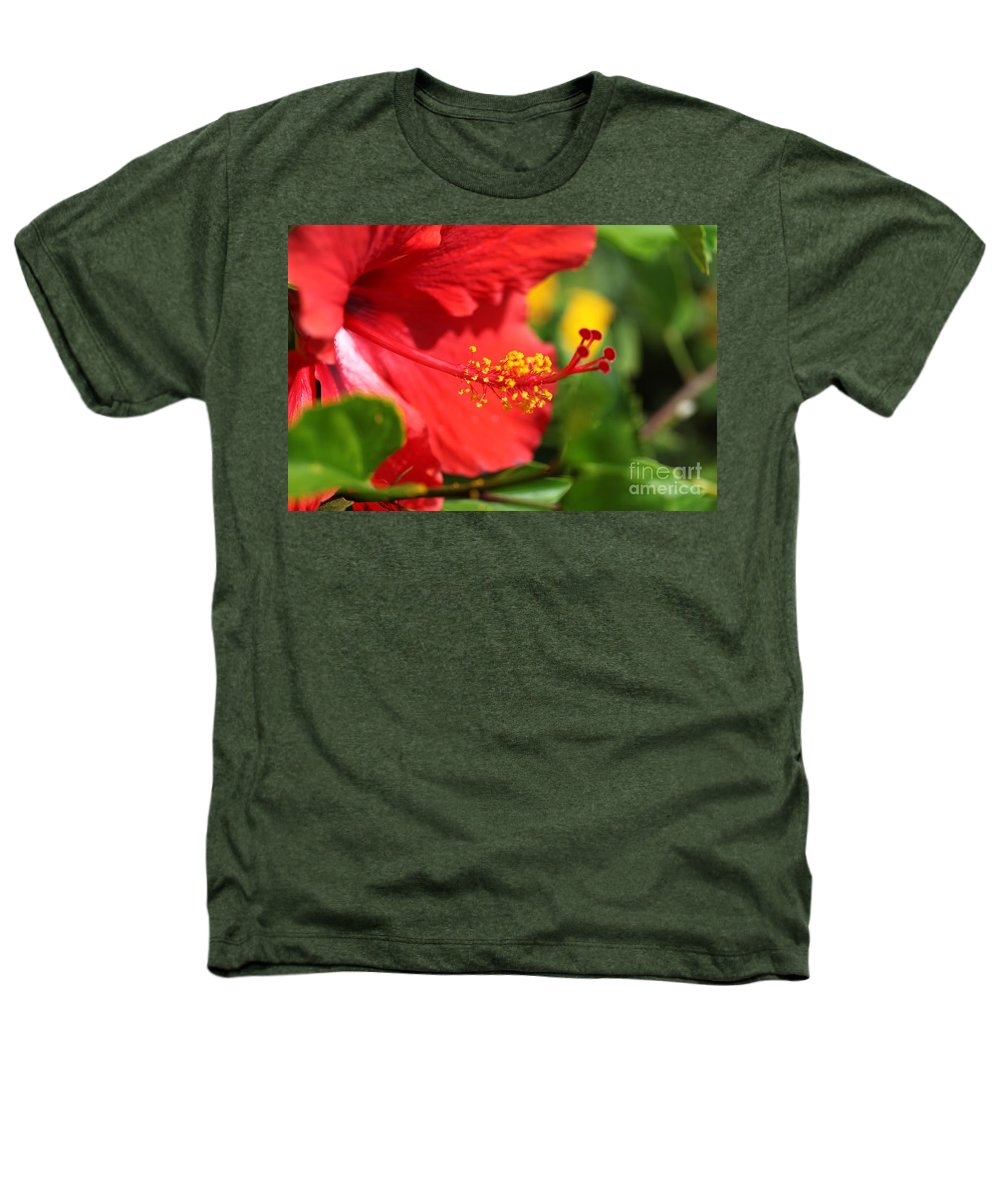 Flowers Heathers T-Shirt featuring the photograph Red Hibiscus And Green by Nadine Rippelmeyer