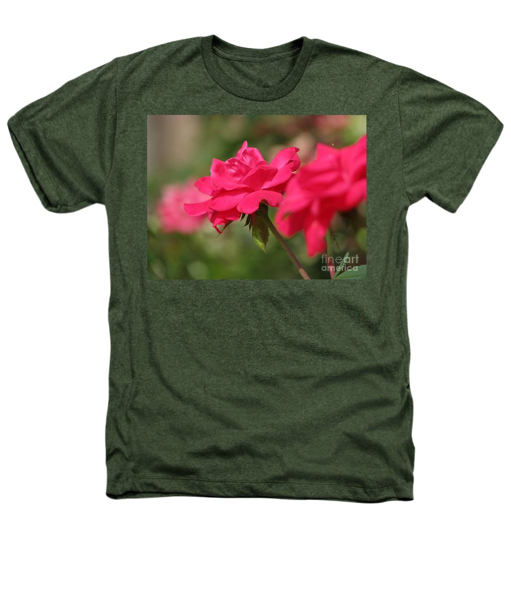 Rose Heathers T-Shirt featuring the photograph Roses by Amanda Barcon
