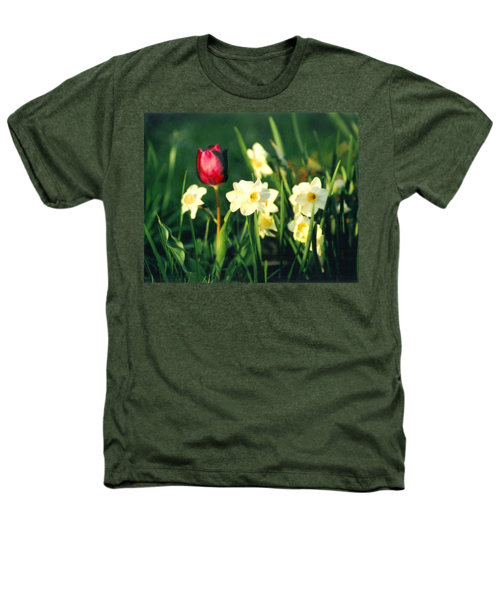 Tulips Heathers T-Shirt featuring the photograph Royal Spring by Steve Karol