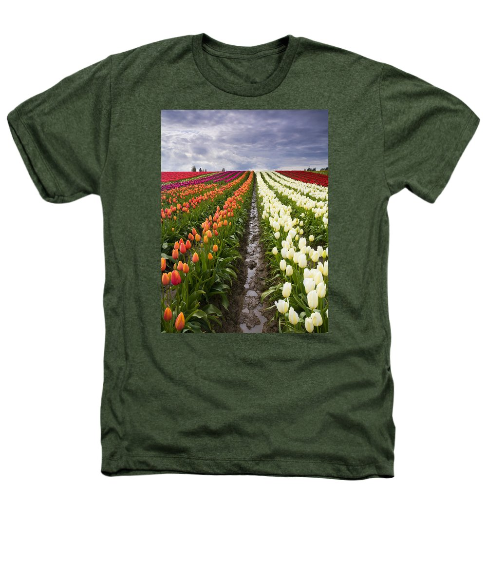 Tulips Heathers T-Shirt featuring the photograph Sea Of Color by Mike Dawson