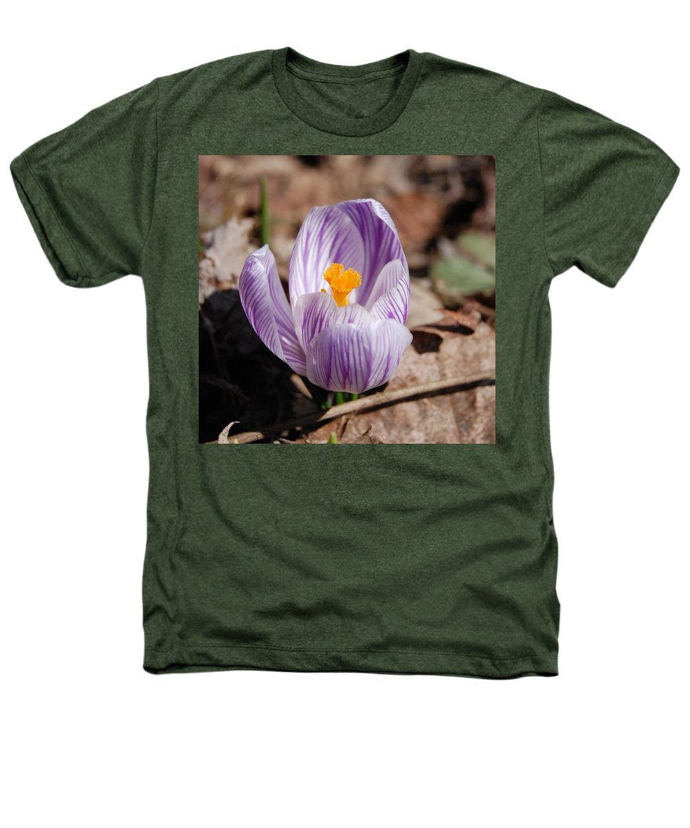 Digital Photography Heathers T-Shirt featuring the photograph Striped Crocus by David Lane