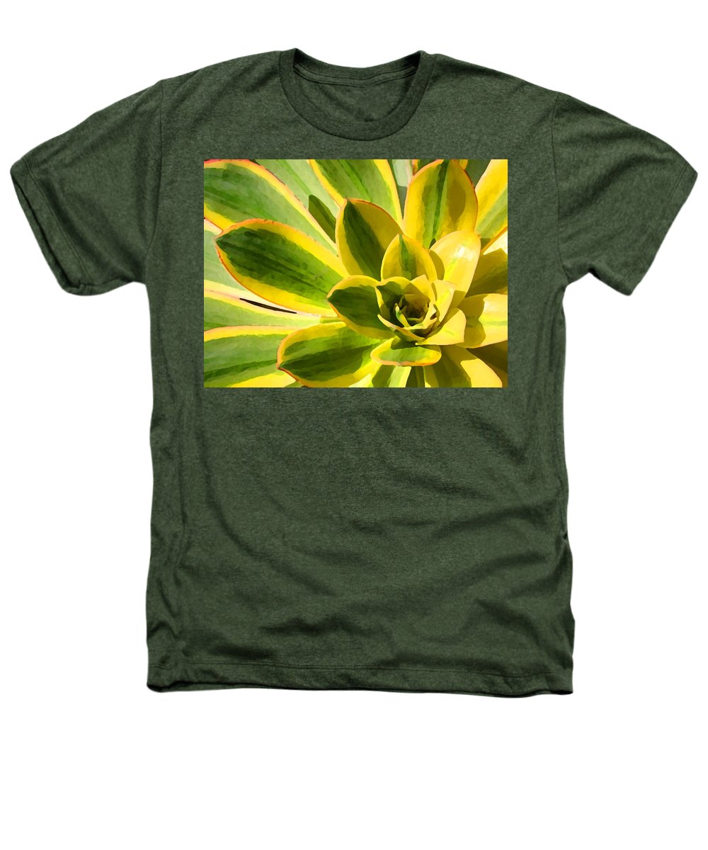 Landscape Heathers T-Shirt featuring the photograph Sunburst Succulent Close-up 2 by Amy Vangsgard