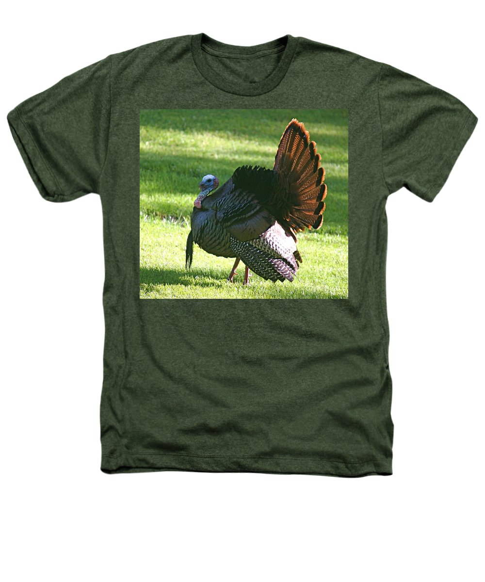 Turkey Heathers T-Shirt featuring the photograph The Big Tom by Robert Pearson