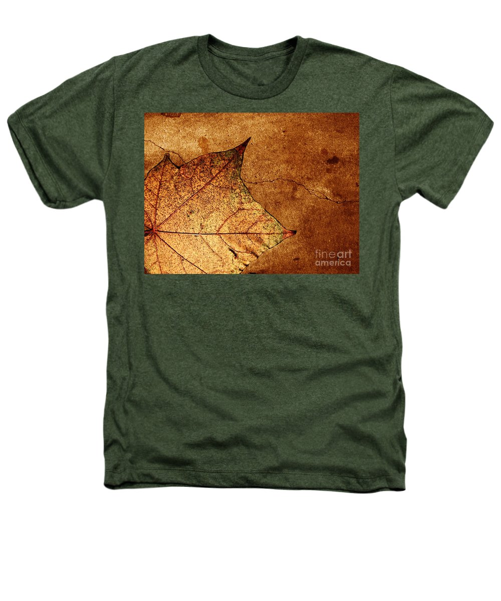 Autumn Heathers T-Shirt featuring the photograph Today Everything Changes by Dana DiPasquale