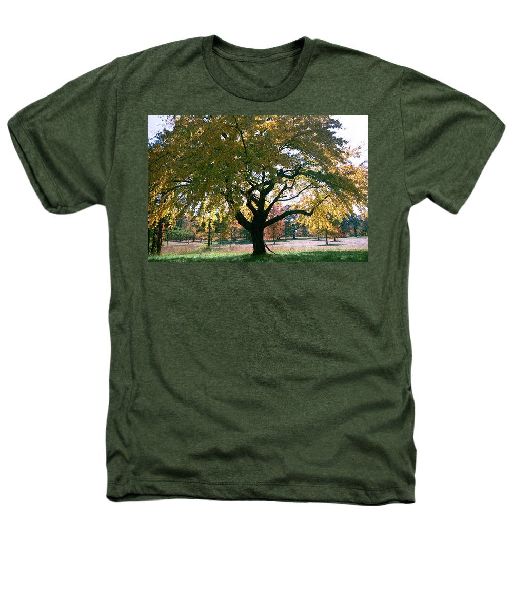 Tree Heathers T-Shirt featuring the photograph Tree by Flavia Westerwelle