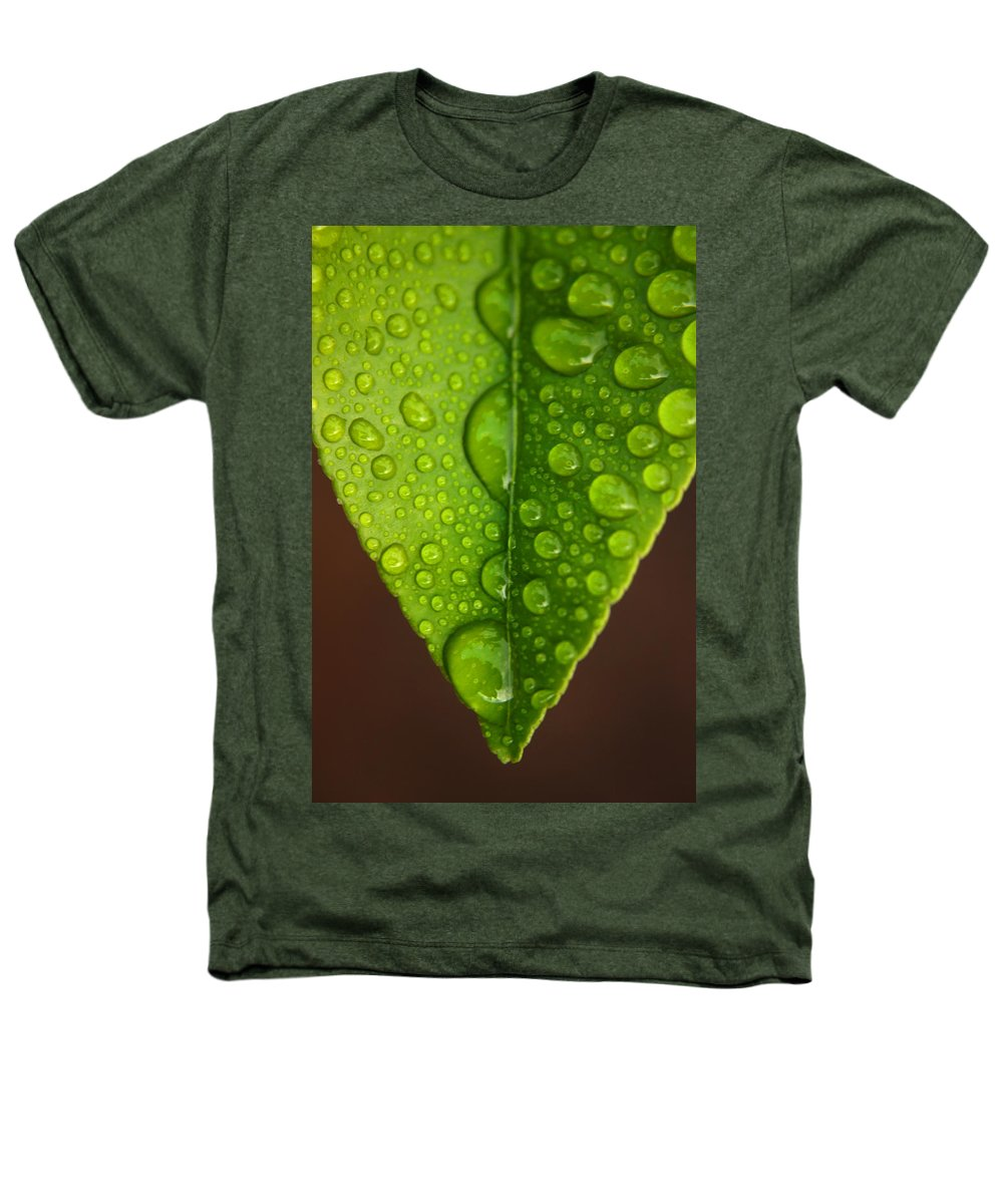 Leaf Heathers T-Shirt featuring the photograph Water Droplets On Lemon Leaf by Ralph A Ledergerber-Photography
