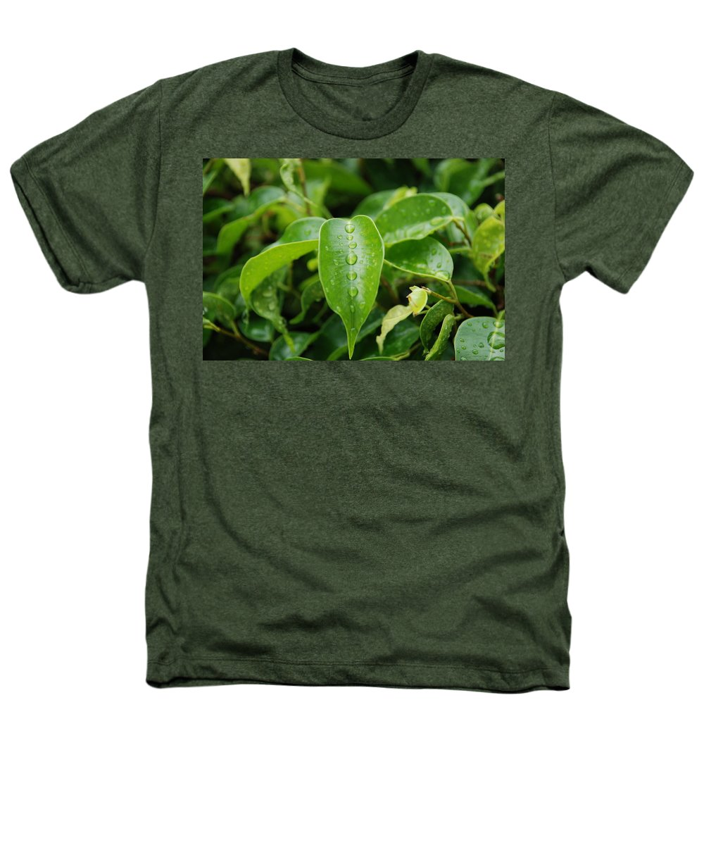 Macro Heathers T-Shirt featuring the photograph Wet Bushes by Rob Hans
