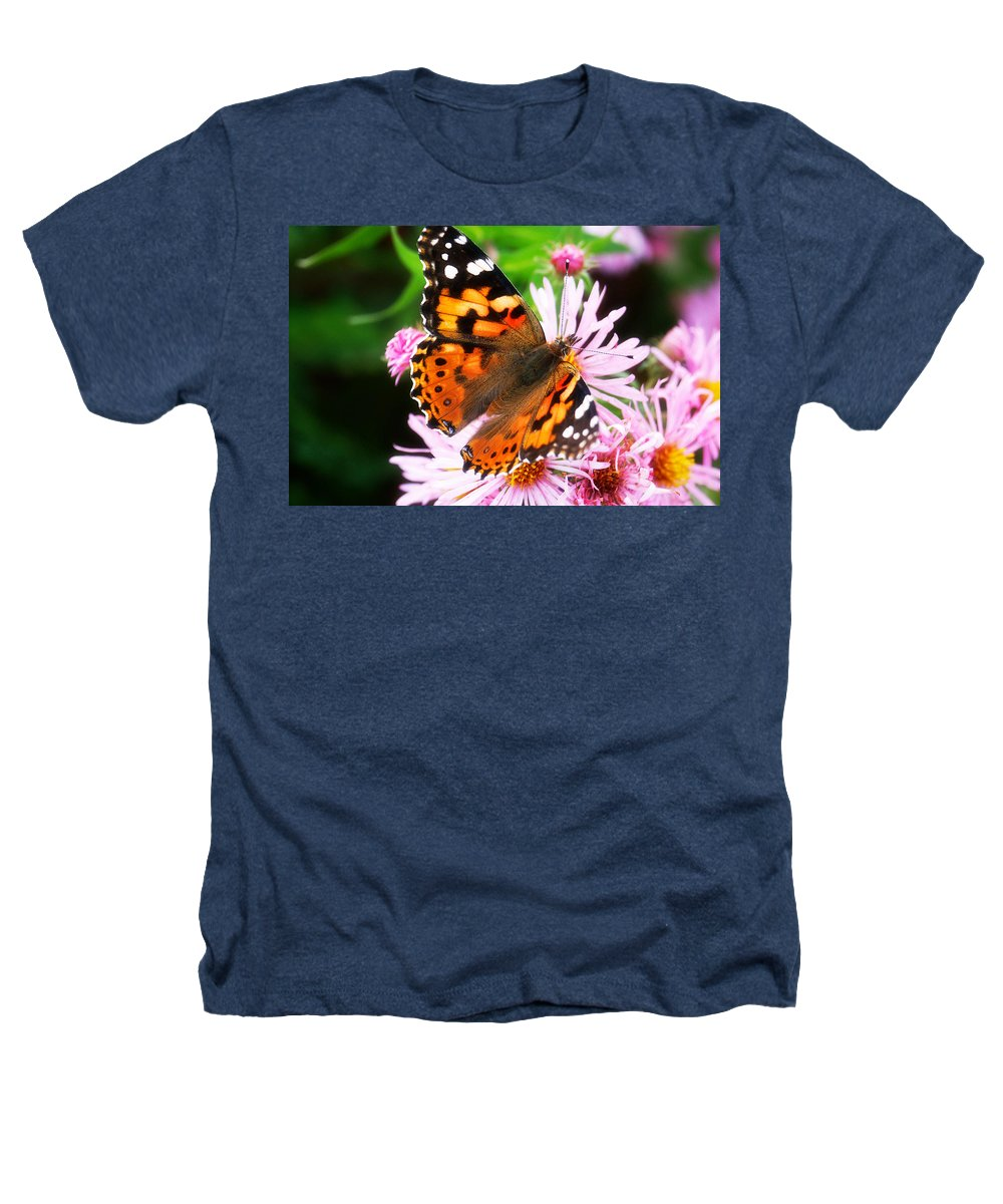 Flower Heathers T-Shirt featuring the photograph Late Summer Painted Lady by Marilyn Hunt