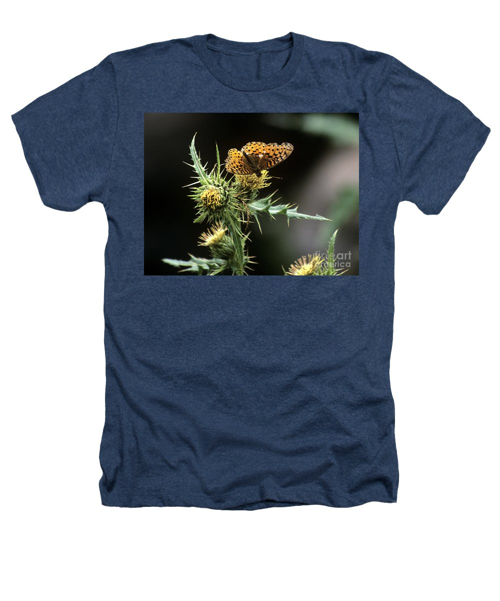 Butterfly Heathers T-Shirt featuring the photograph Monarch On Thistle by Kathy McClure