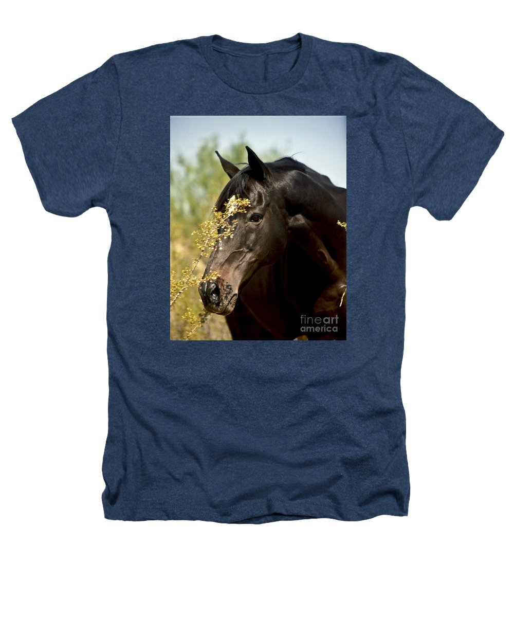 Horse Heathers T-Shirt featuring the photograph Portrait Of A Thoroughbred by Kathy McClure