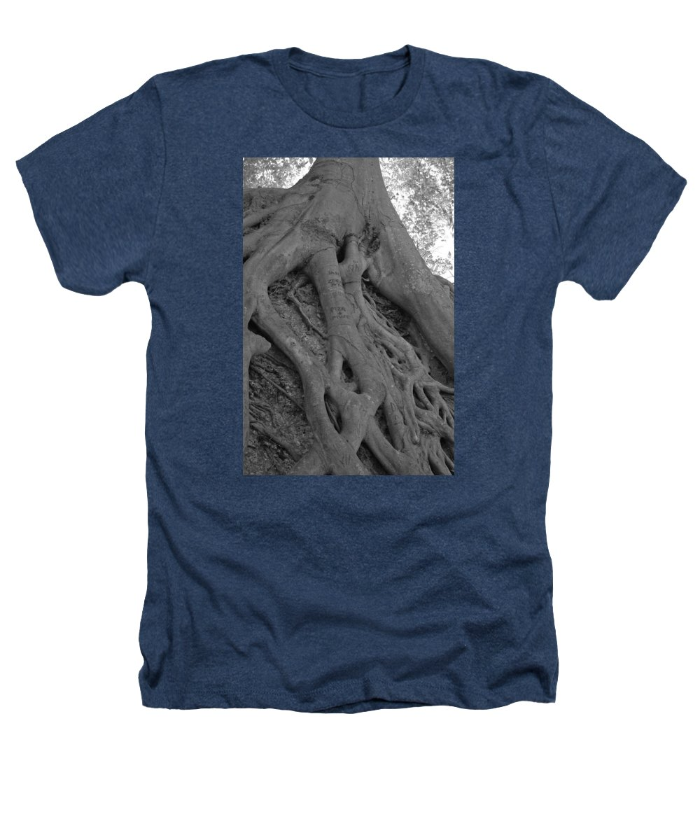 Tree Heathers T-Shirt featuring the photograph Roots II by Suzanne Gaff