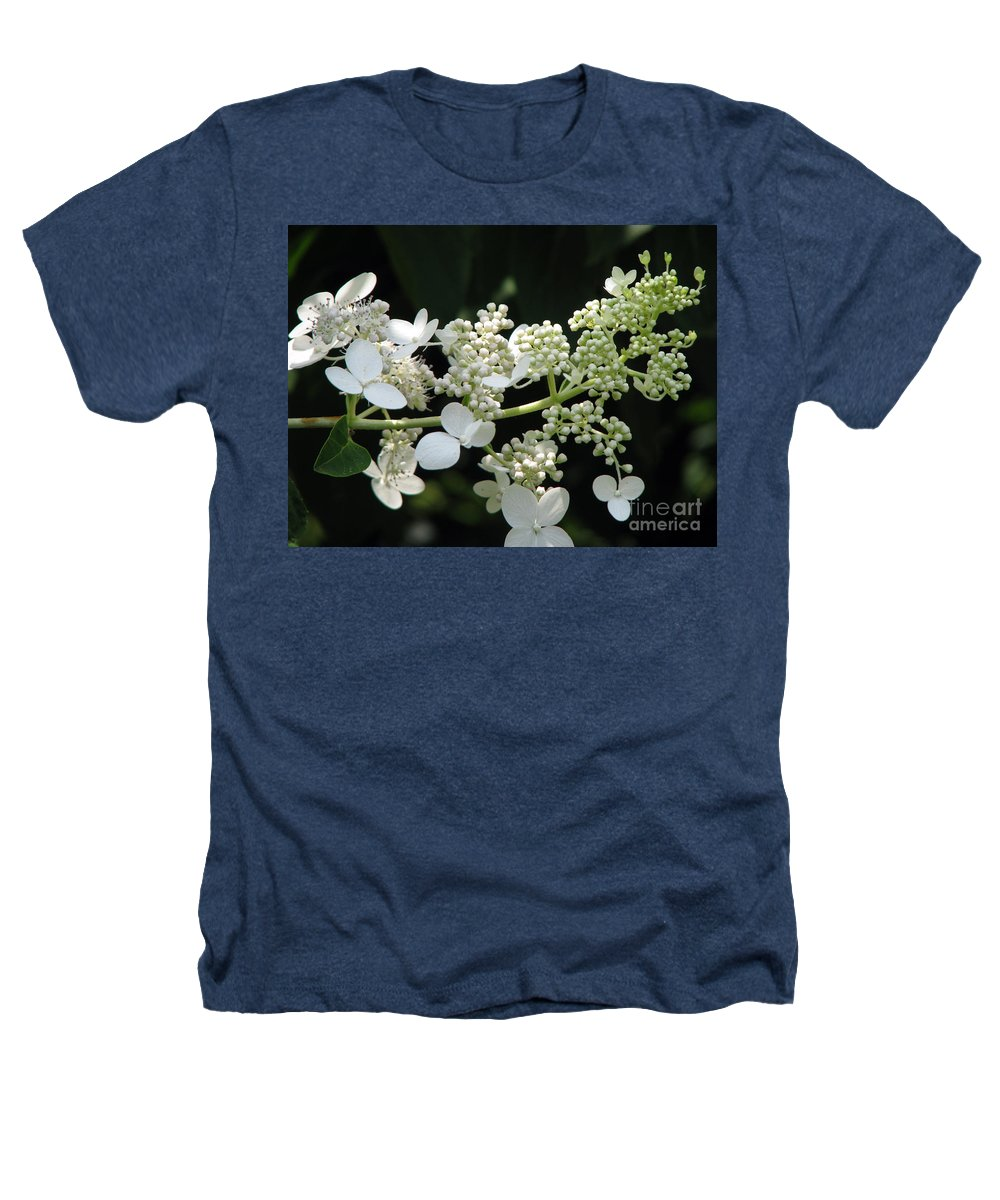 Hydrangea Heathers T-Shirt featuring the photograph Simply by Amanda Barcon