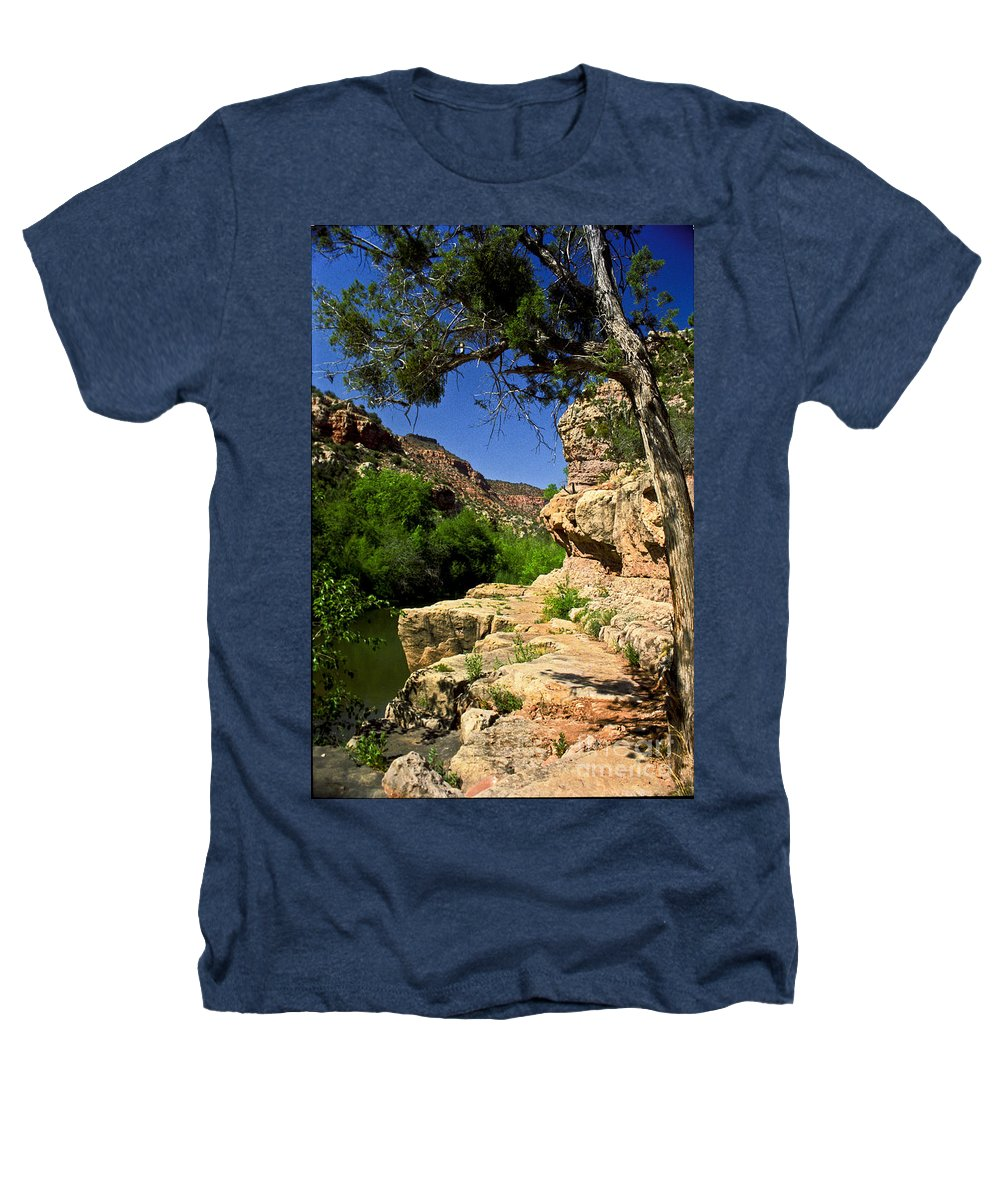Arizona Heathers T-Shirt featuring the photograph Sycamore Canyon by Kathy McClure