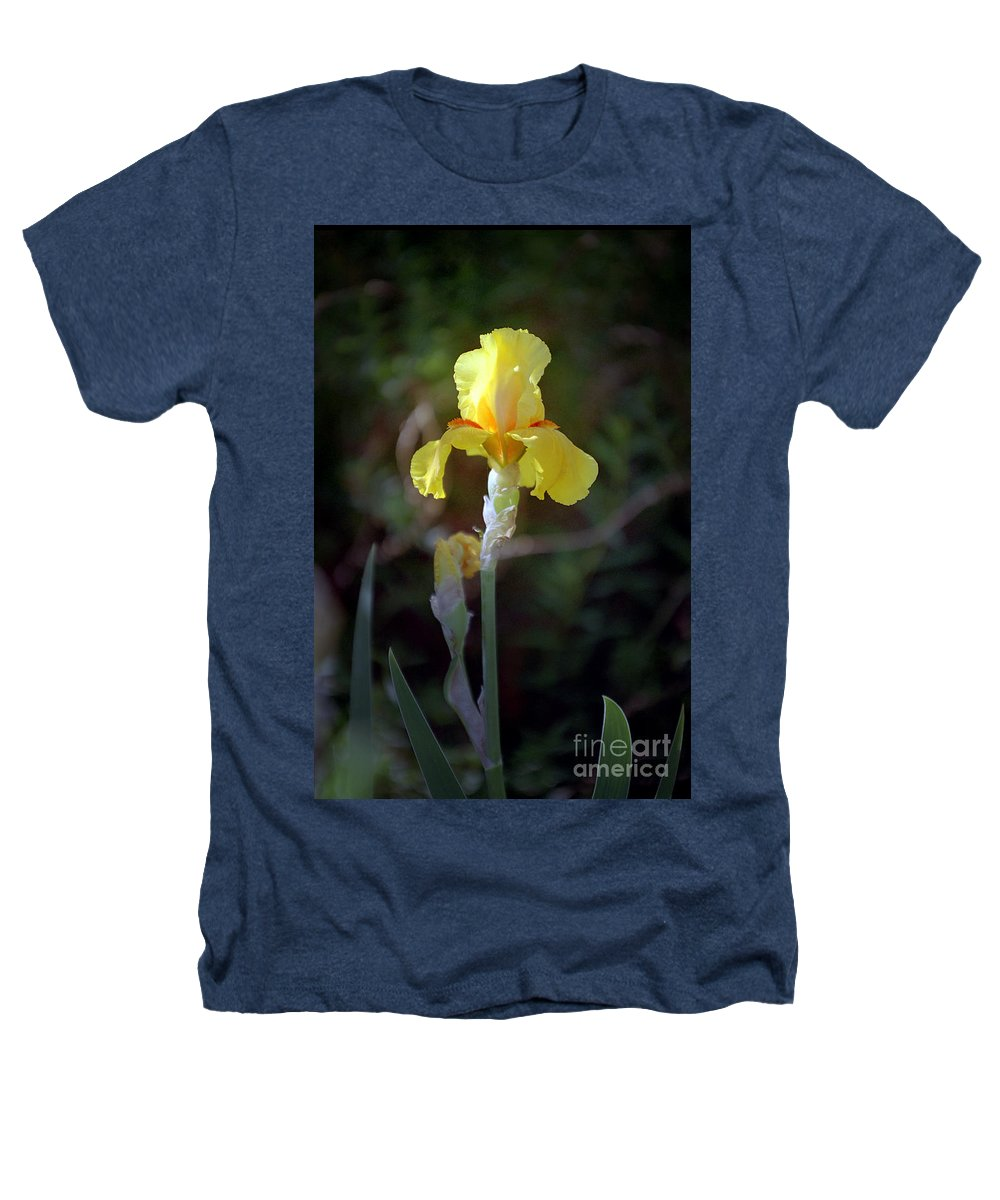 Iris Heathers T-Shirt featuring the photograph Yellow Iris by Kathy McClure