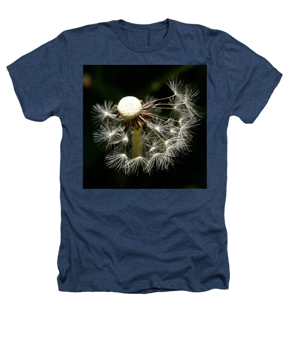 Dandelion Heathers T-Shirt featuring the photograph Dandelion by Ralph A Ledergerber-Photography