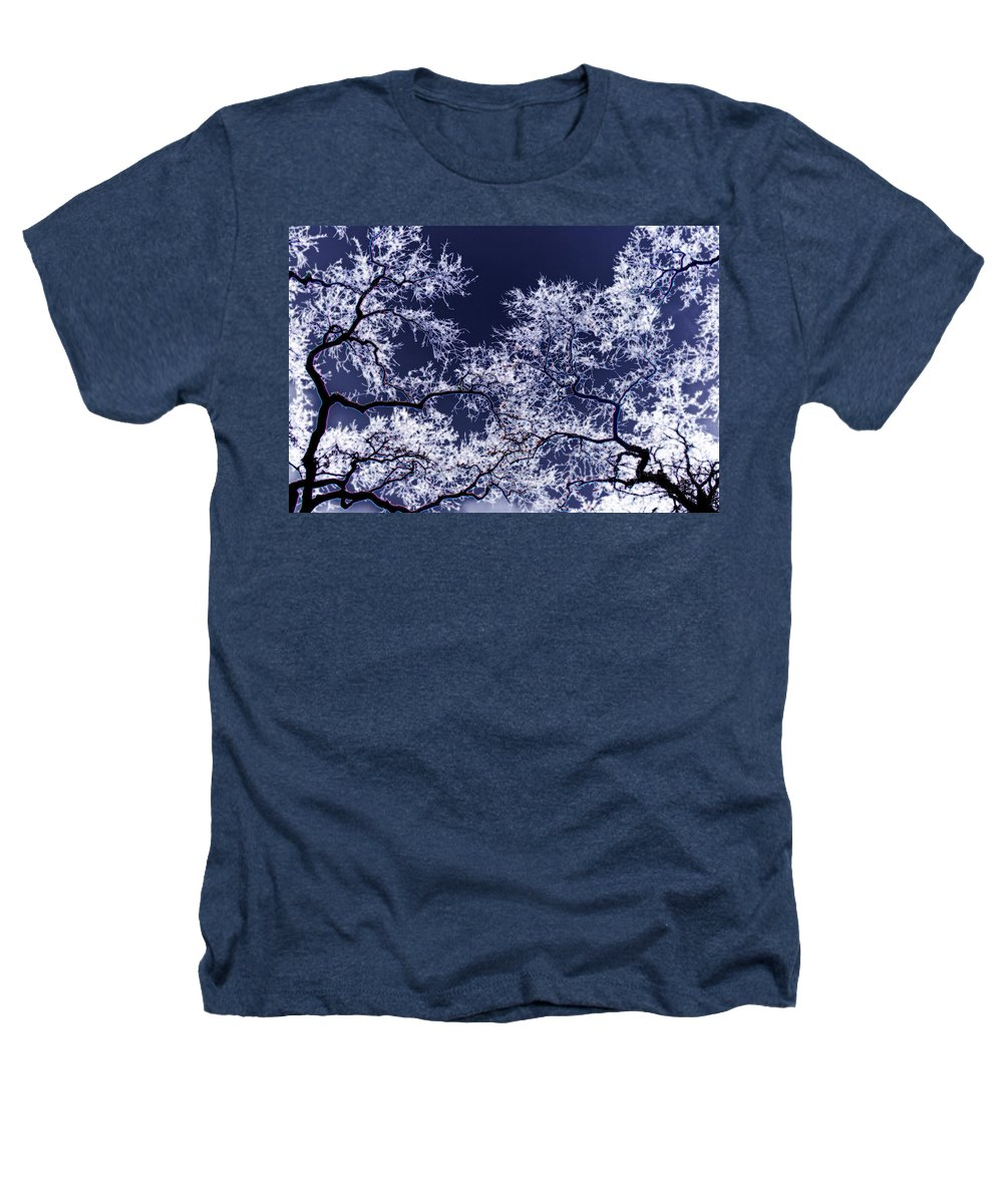 Tree Heathers T-Shirt featuring the photograph Tree Fantasy 17 by Lee Santa