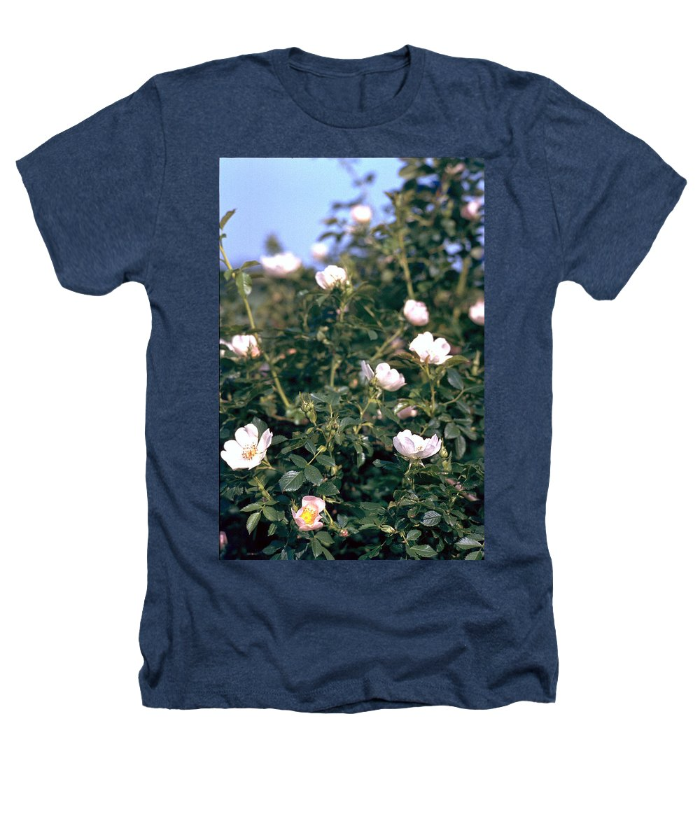 Anemone Heathers T-Shirt featuring the photograph Anemone by Flavia Westerwelle