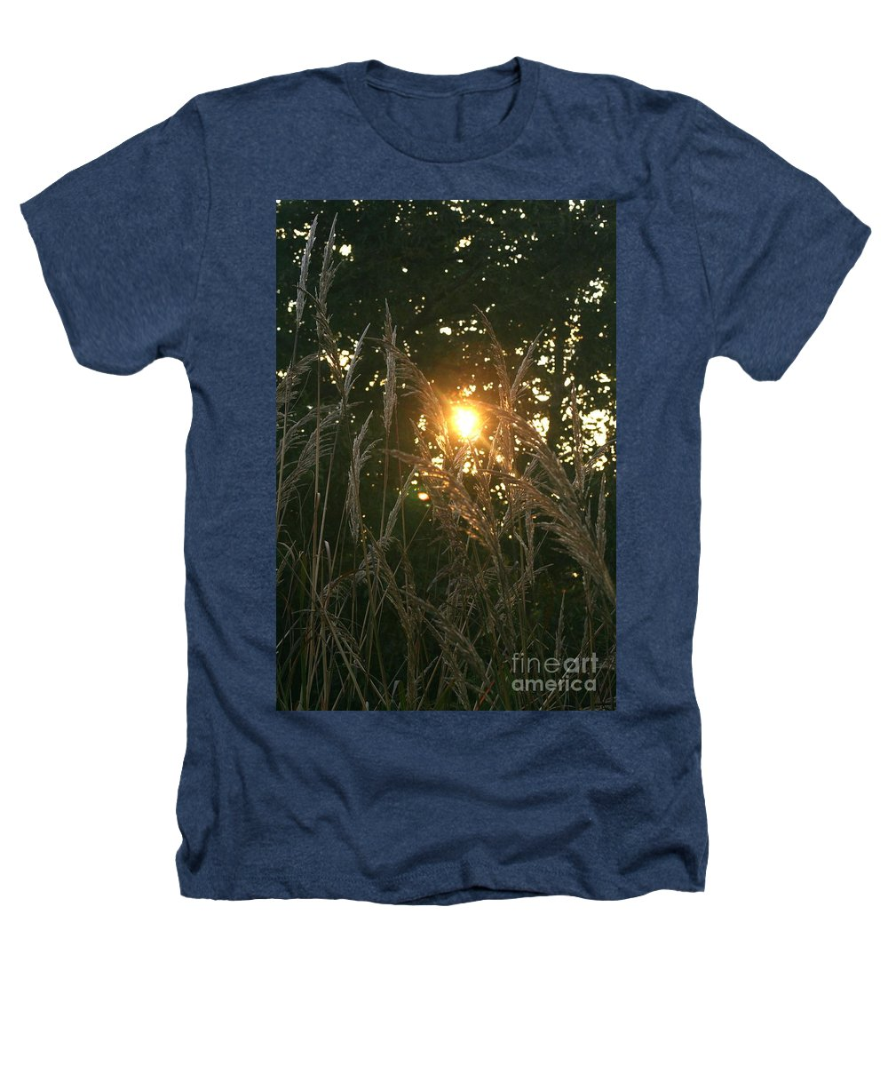 Light Heathers T-Shirt featuring the photograph Autumn Grasses In The Morning by Nadine Rippelmeyer