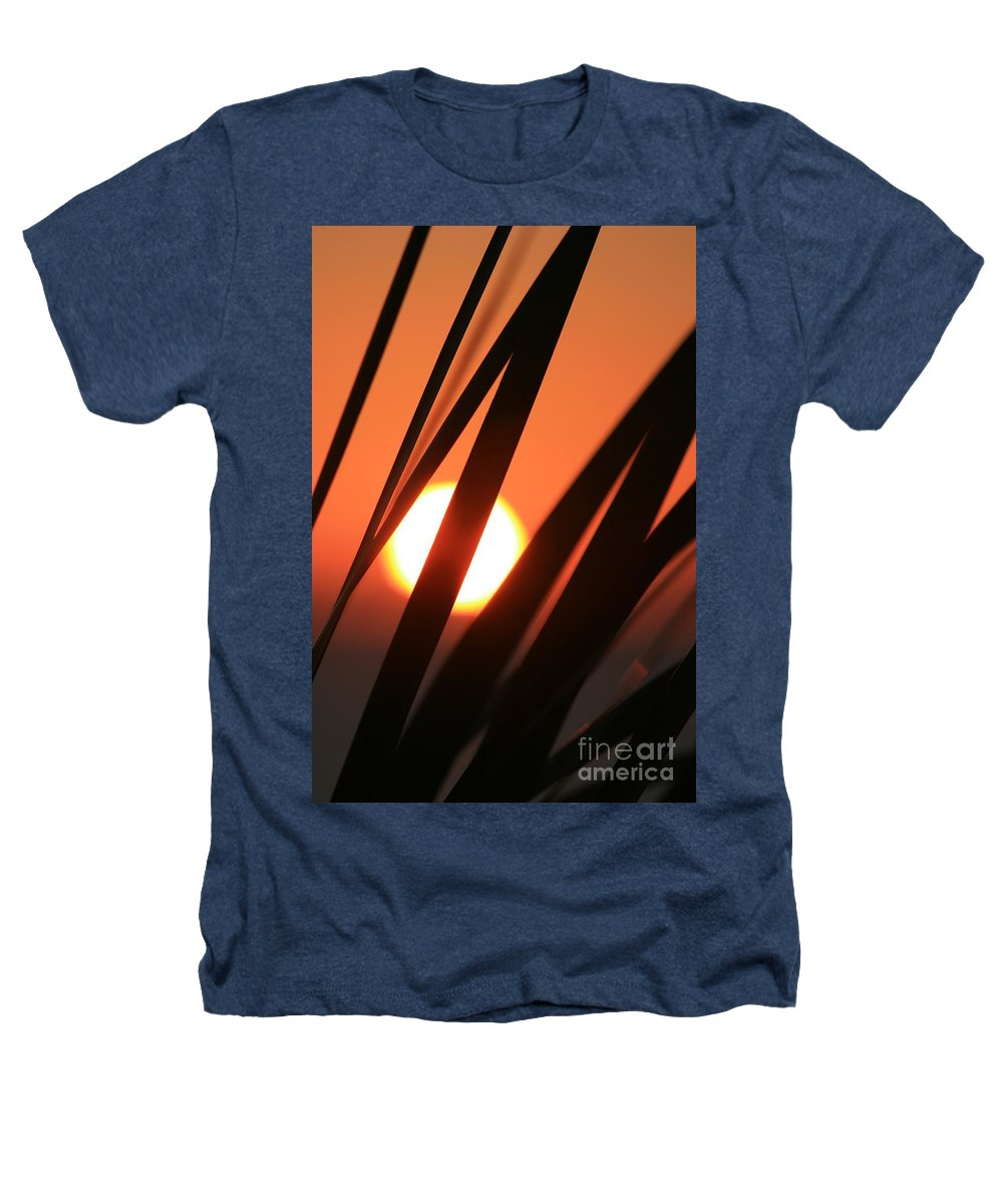 Sun Heathers T-Shirt featuring the photograph Blazing Sunset And Grasses by Nadine Rippelmeyer