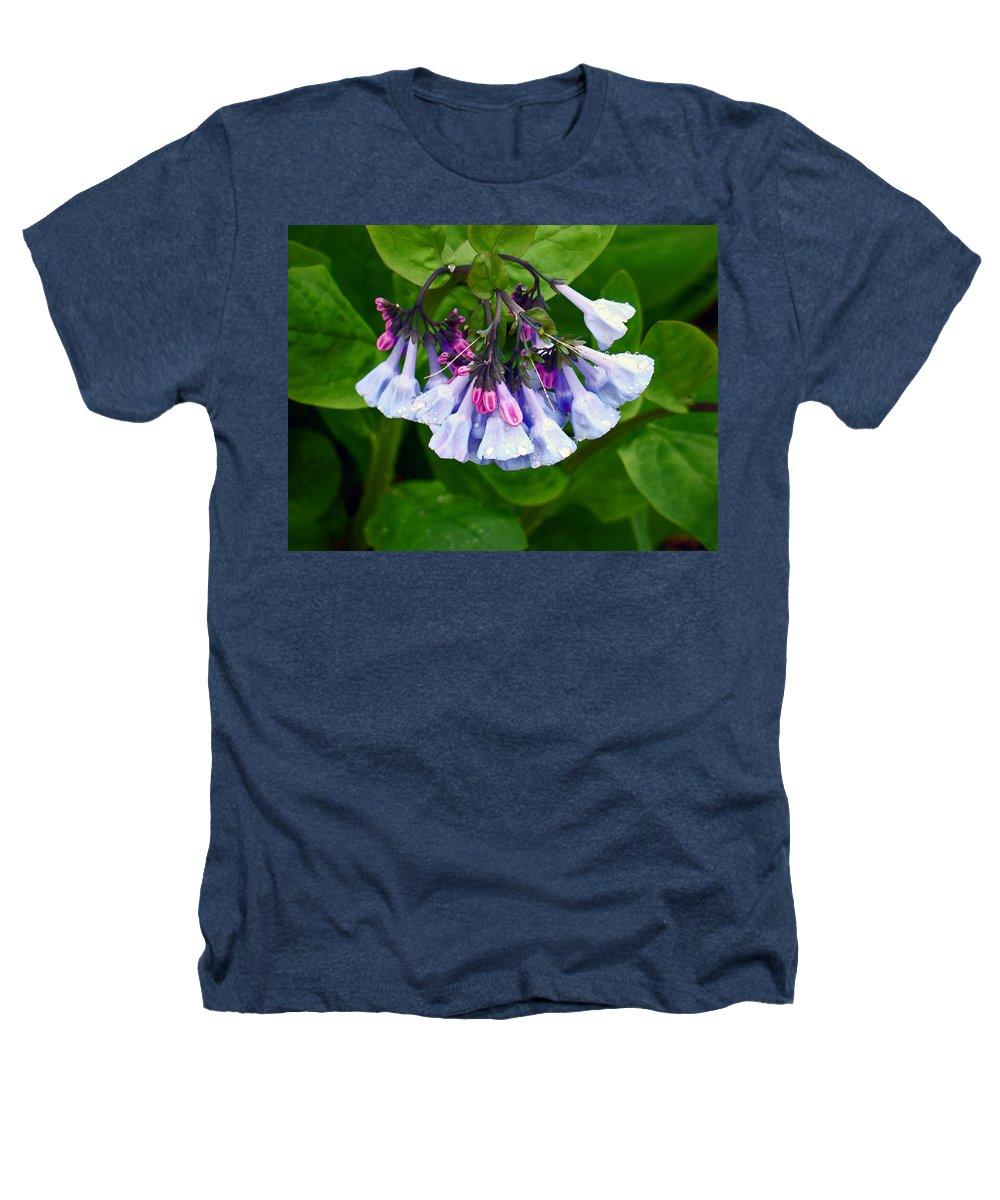 Native Landscape Heathers T-Shirt featuring the photograph Blue Bells by Steve Karol