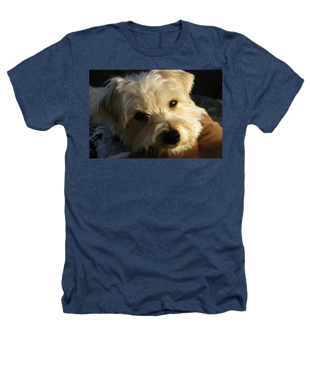 Dog Heathers T-Shirt featuring the photograph Charlie by Ed Smith
