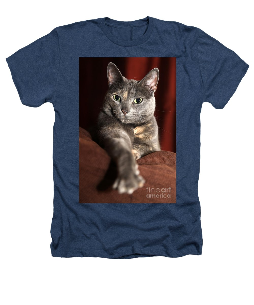 Kitty Heathers T-Shirt featuring the photograph Come Here by Amanda Barcon
