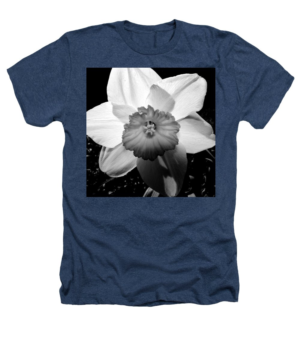 Daffodil Heathers T-Shirt featuring the photograph Daffodil In Springtime by Michelle Calkins