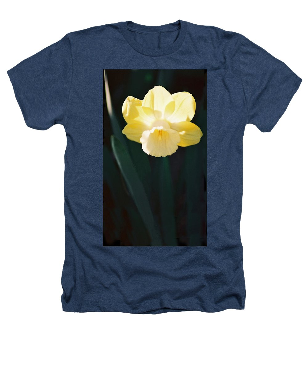 Daffodil Heathers T-Shirt featuring the photograph Daffodil by Steve Karol