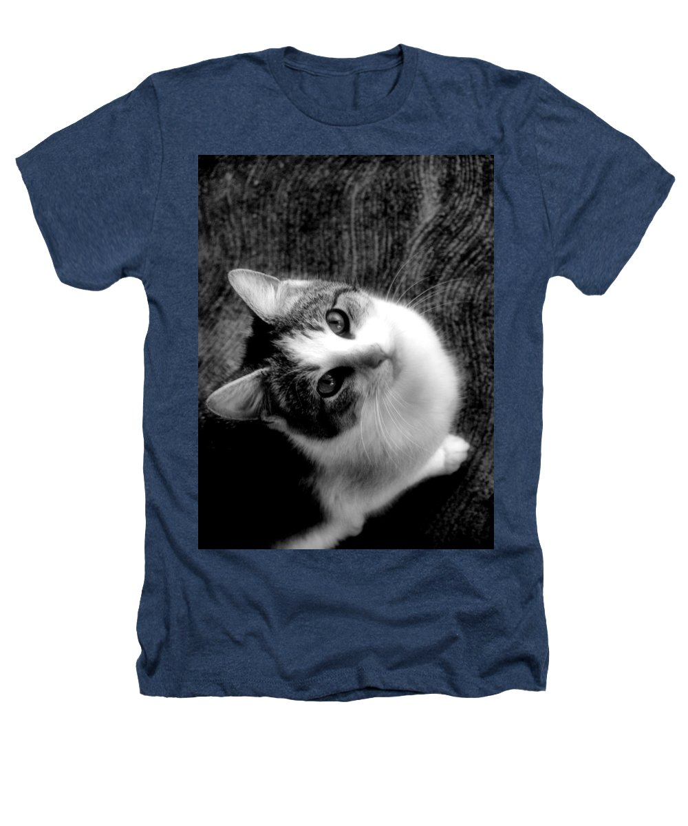 Cat Heathers T-Shirt featuring the photograph Don't Ever Leave by Gaby Swanson