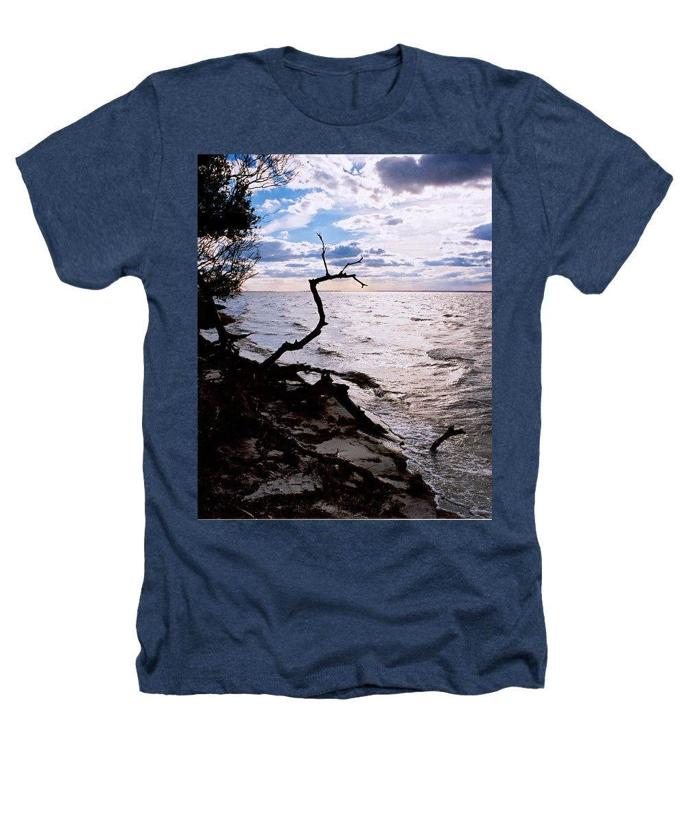 Barnegat Heathers T-Shirt featuring the photograph Driftwood Dragon-barnegat Bay by Steve Karol
