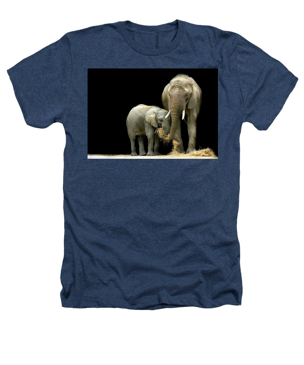 Elephant Heathers T-Shirt featuring the photograph Feeding Time by Stephie Butler