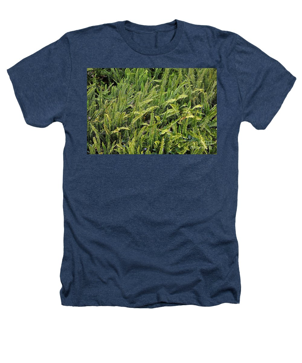 Clay Heathers T-Shirt featuring the photograph Fern by Clayton Bruster