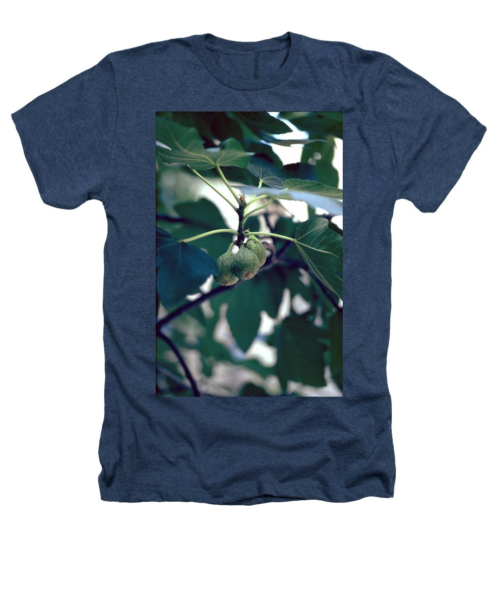 Fig Heathers T-Shirt featuring the photograph Fig by Flavia Westerwelle