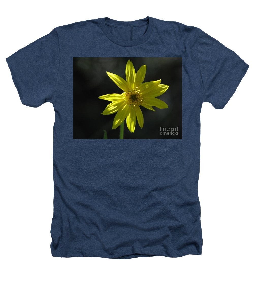 Light Heathers T-Shirt featuring the photograph Floral by Amanda Barcon