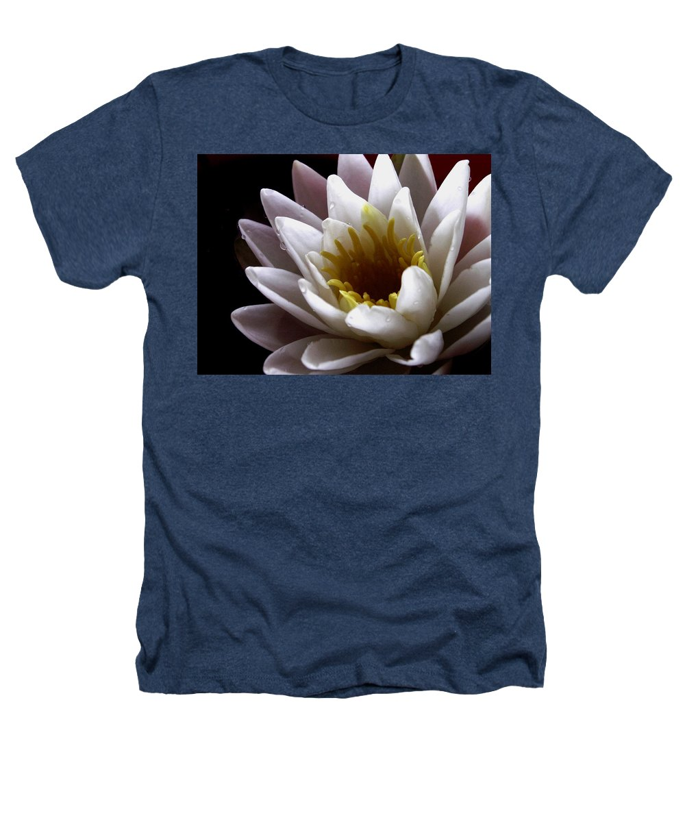 Flowers Heathers T-Shirt featuring the photograph Flower Waterlily by Nancy Griswold
