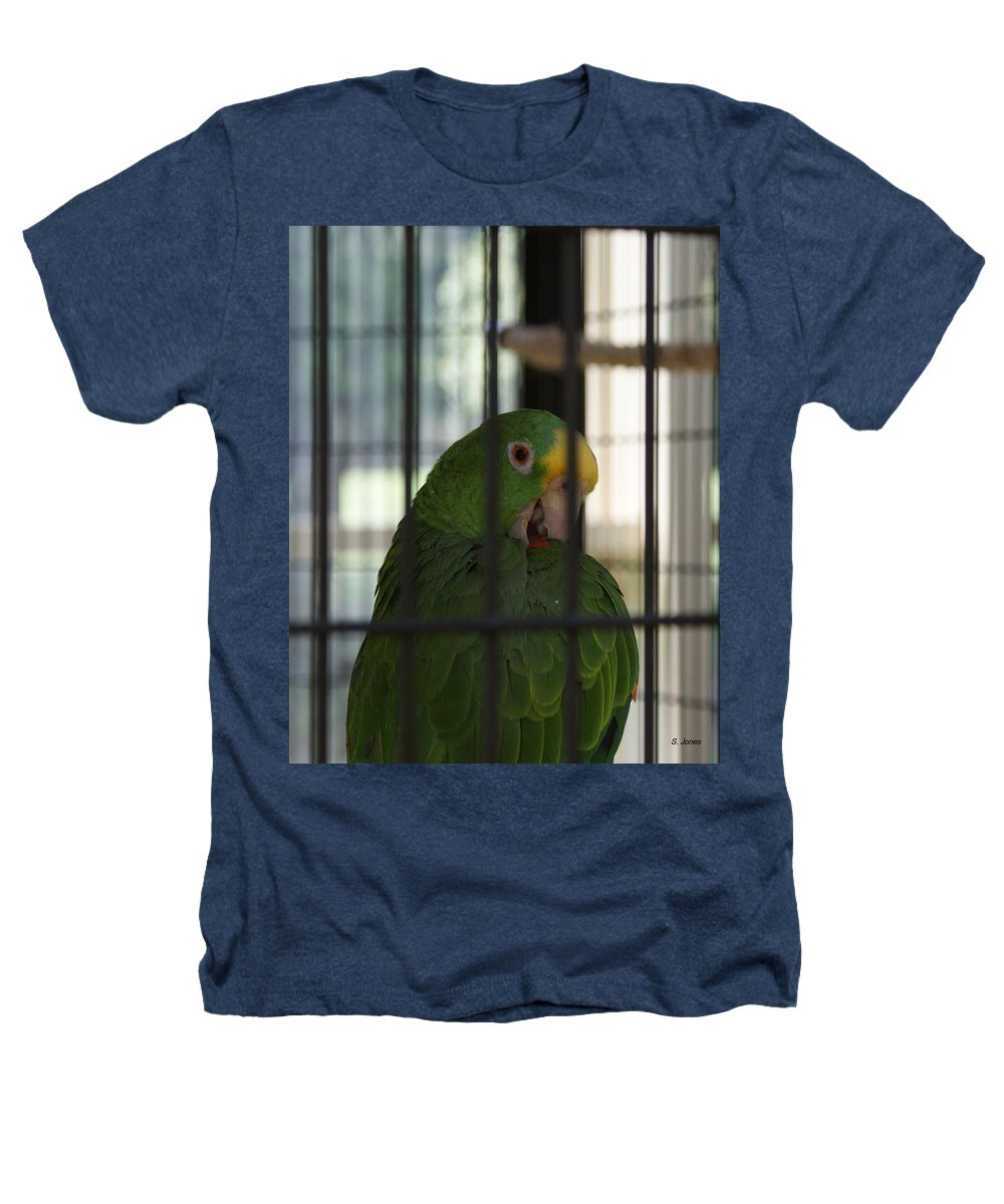 Parrot Heathers T-Shirt featuring the photograph Framed by Shelley Jones