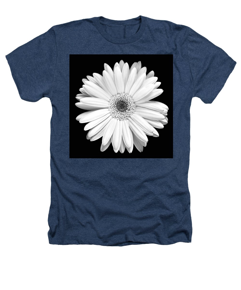 Gerber Heathers T-Shirt featuring the photograph Single Gerbera Daisy by Marilyn Hunt