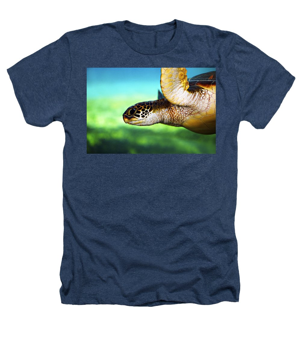 Green Heathers T-Shirt featuring the photograph Green Sea Turtle by Marilyn Hunt