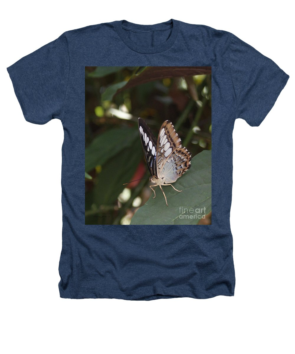 Butterfly Heathers T-Shirt featuring the photograph Hints Of Blue by Shelley Jones