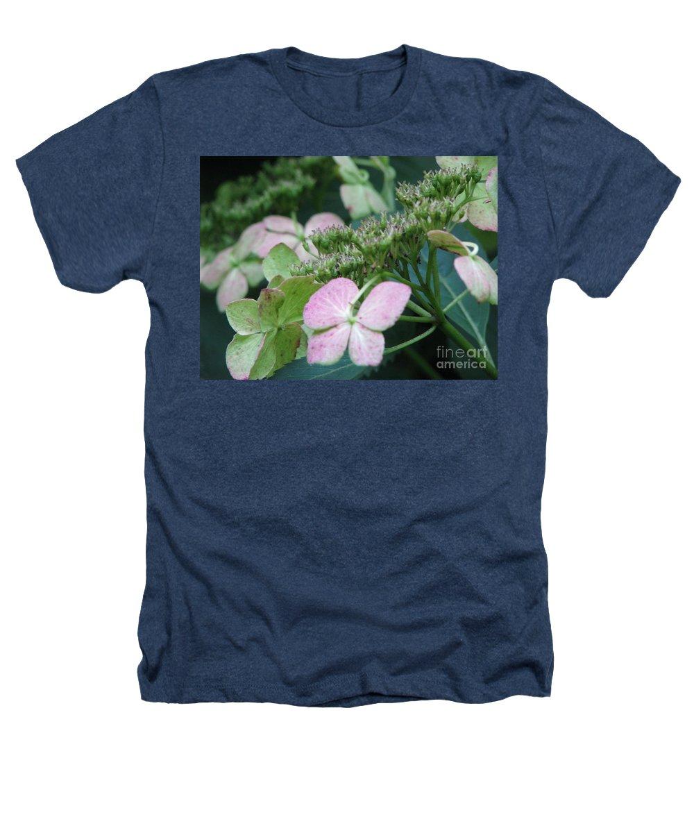 Hydrangea Heathers T-Shirt featuring the photograph Hydrangea by Amanda Barcon