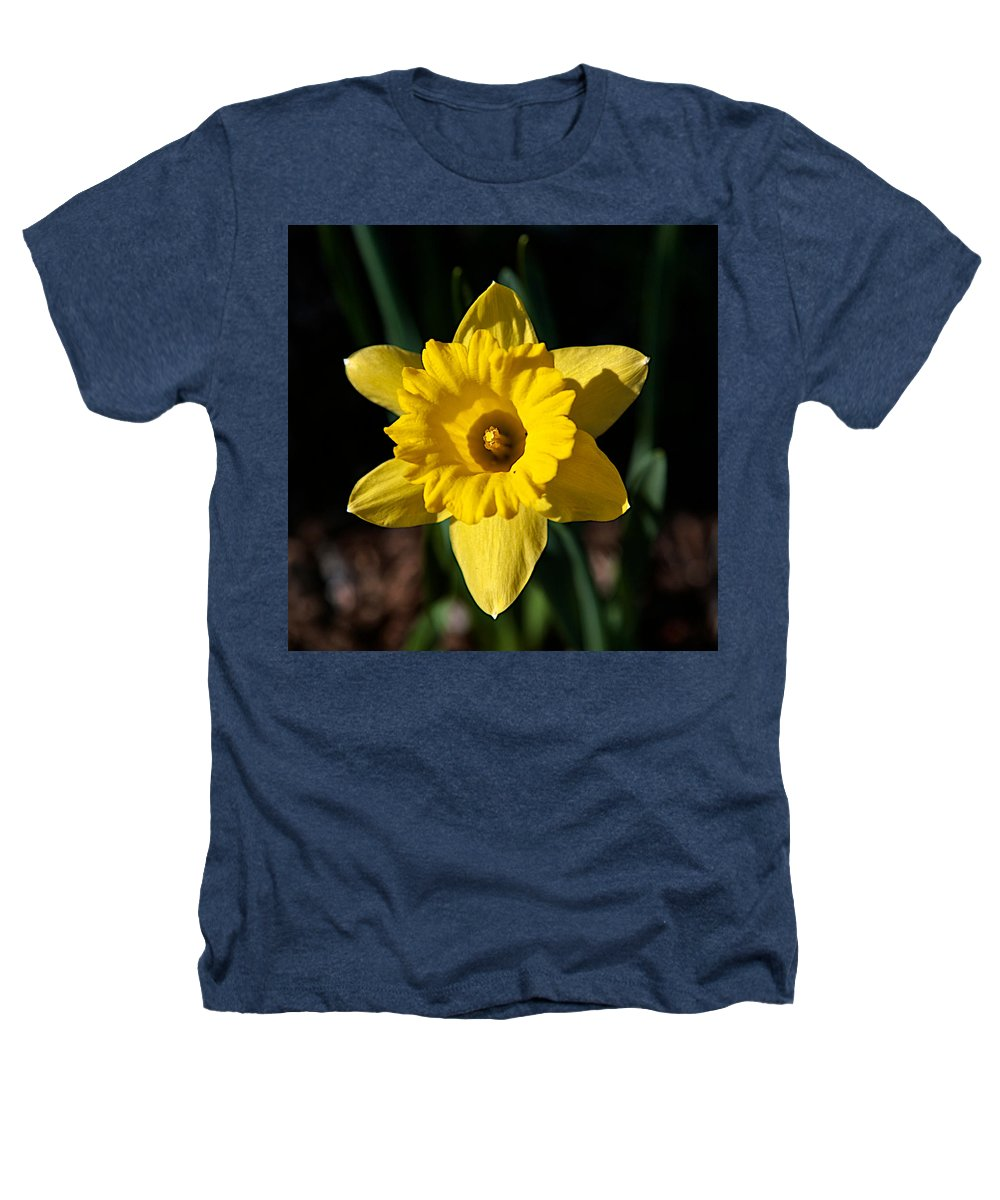 Flower Heathers T-Shirt featuring the photograph In All Its Glory by Robert Pearson