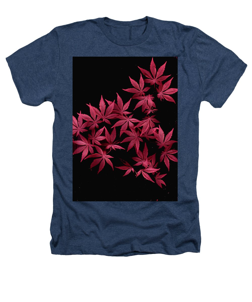 Japanese Maple Heathers T-Shirt featuring the photograph Japanese Maple Leaves by Wayne Potrafka