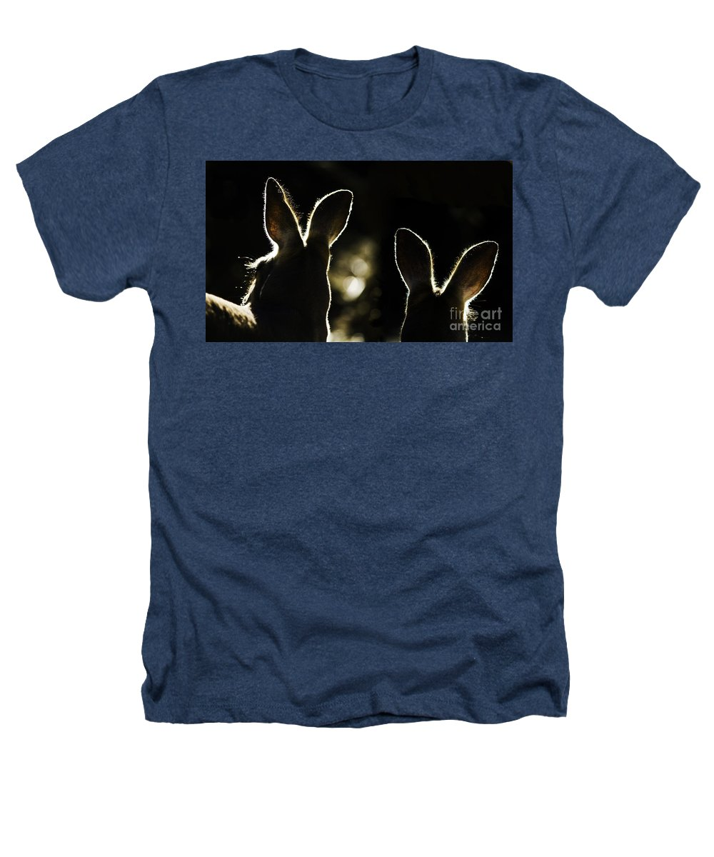 Kangaroo Heathers T-Shirt featuring the photograph Kangaroos Backlit by Sheila Smart Fine Art Photography