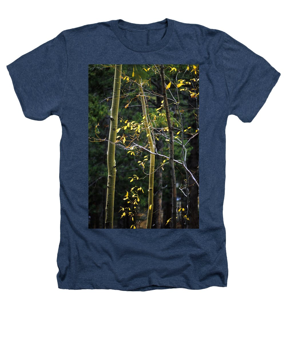 Aspen Heathers T-Shirt featuring the photograph Late Aspen by Jerry McElroy