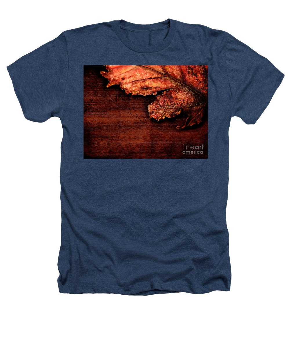 Red Heathers T-Shirt featuring the photograph Let Me Hold You... by Dana DiPasquale