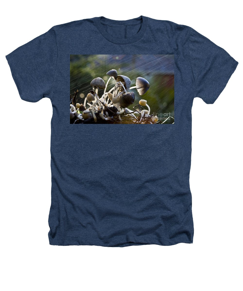 Mushrooms Rain Showers Umbrellas Nature Fungi Heathers T-Shirt featuring the photograph Nature by Sheila Smart Fine Art Photography