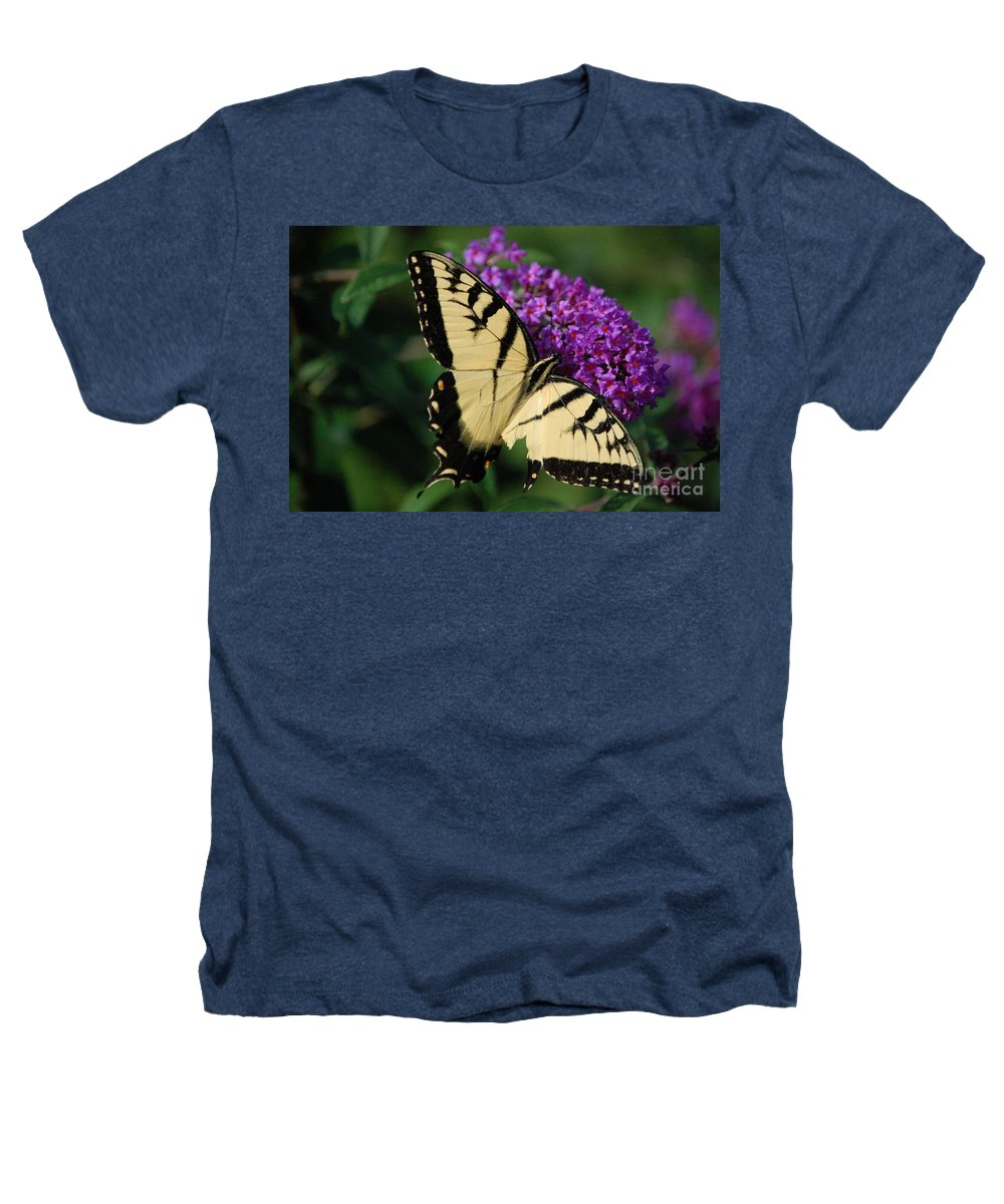 Butterfly Heathers T-Shirt featuring the photograph Nothing Is Perfect by Debbi Granruth