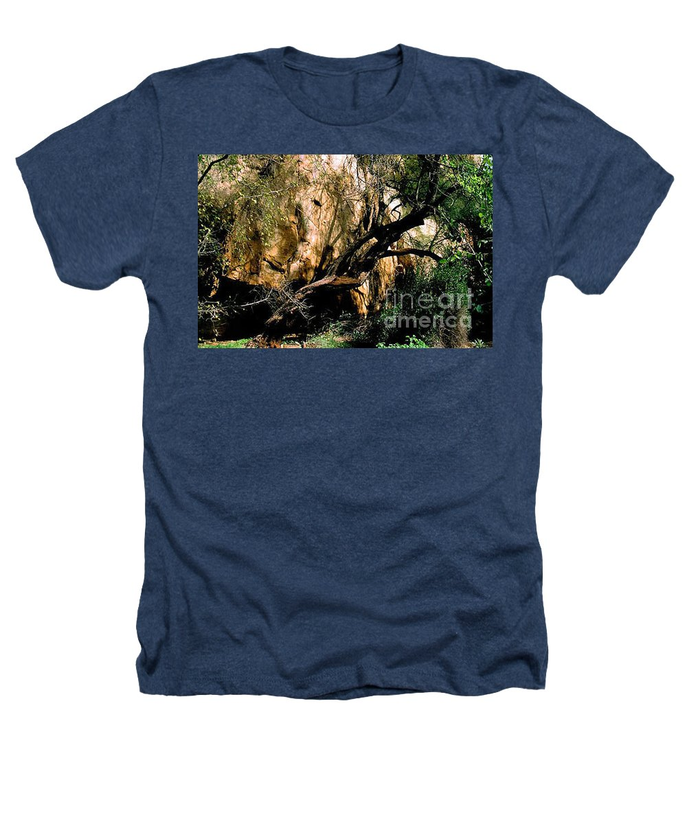 Trees Heathers T-Shirt featuring the photograph Old Tree by Kathy McClure